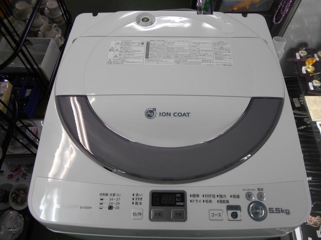 SHARP 5.5kg ES-GE55N
